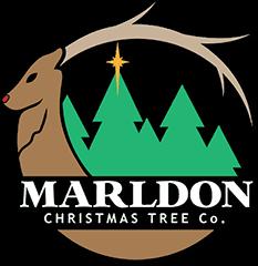 Marldon Christmas Trees Logo
